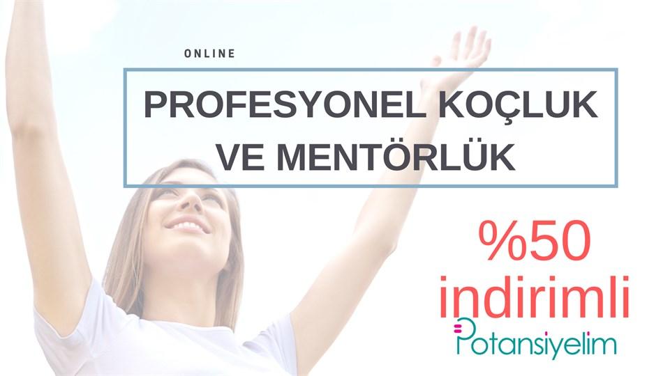 Online Profesyonel Koçluk ve Mentörlük Programı