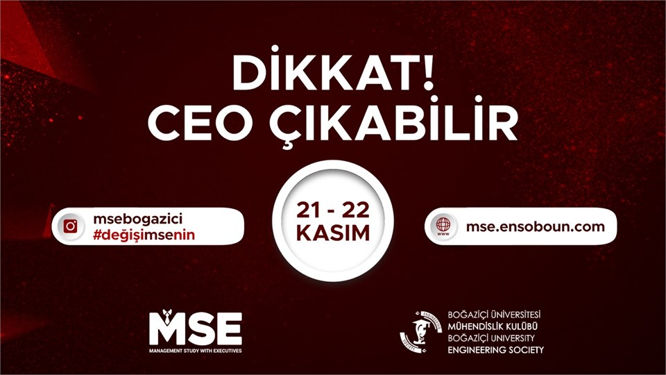 Management Study with Executives (MSE)