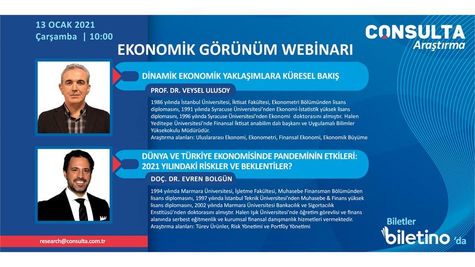 Consulta Araştırma Ekonomik Görünüm