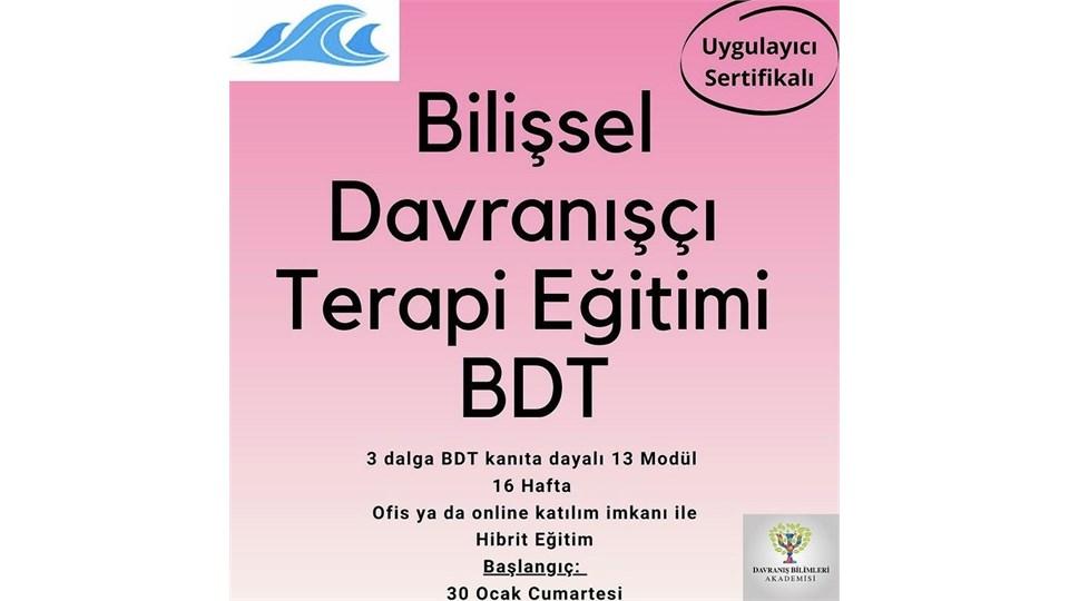 Bilişsel Davranışçı Terapi Eğitimi BDT