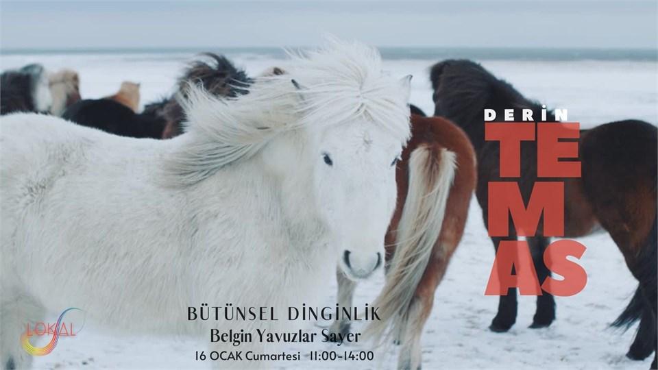 DERİN TEMAS | Bütünsel Dinginlik | Belgin Sayer