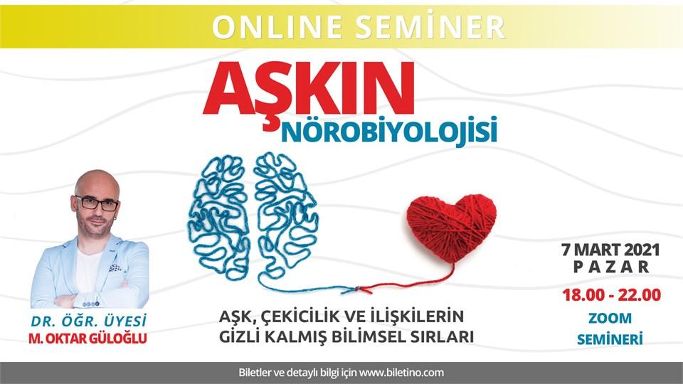 Aşkın Nörobiyolojisi: Aşk, çekicilik ve ilişkilerin gizli kalmış bilimsel sırları