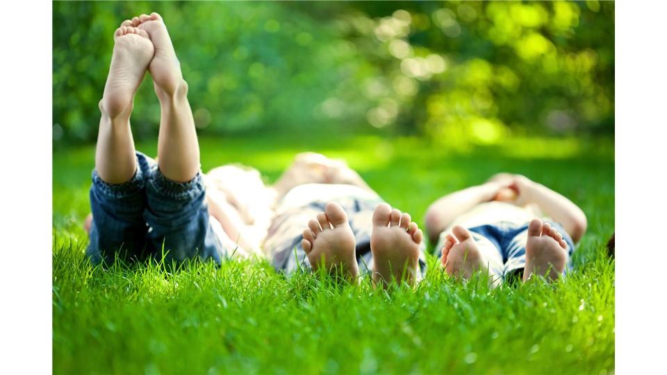 Çocuğunla Anlaşma Sanatı - Ebeveyn Koçluğu Atölyesi