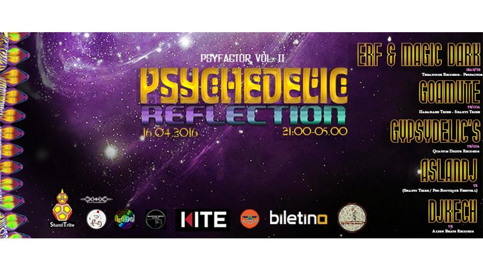PSYFACTOR VOL II - PSYCHEDELIC REFLECTION