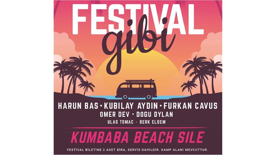 Festival Gibi