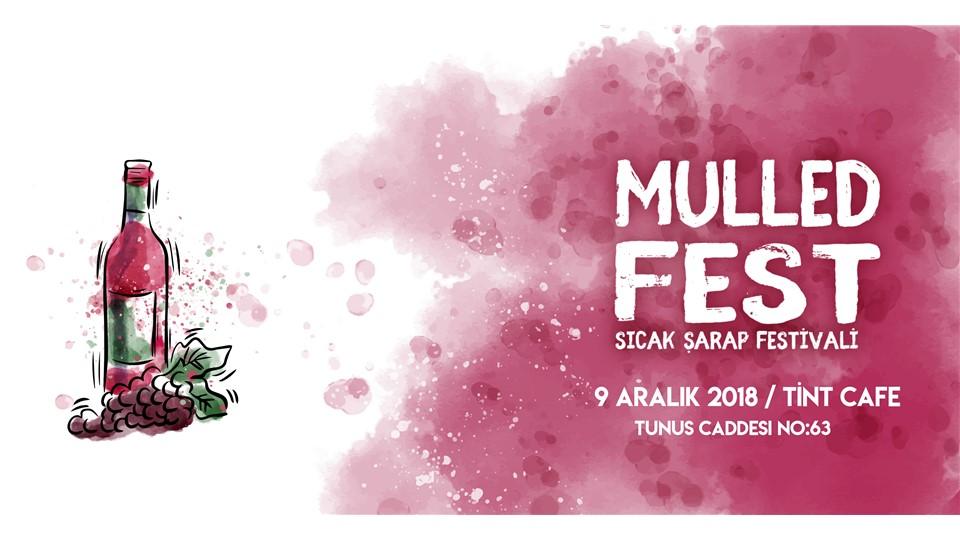 Sıcak Şarap Festivali Ankara | MulledFest