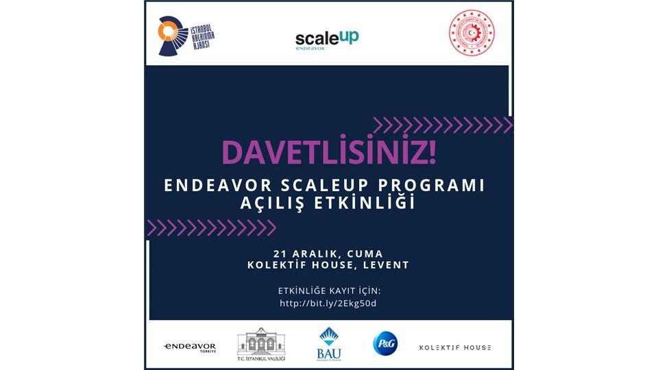 ScaleUp Programı