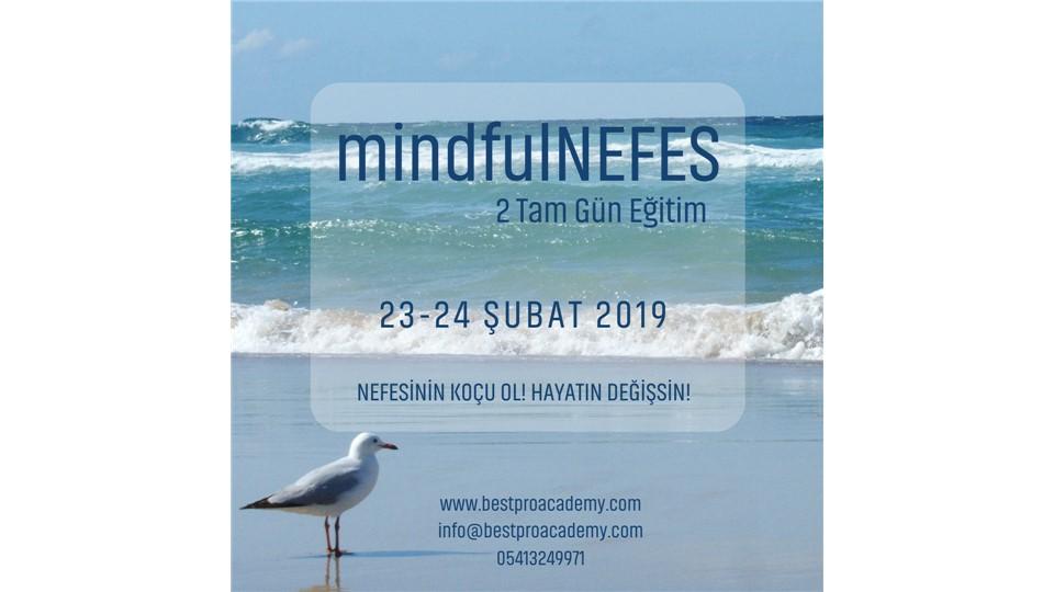 mindfulNEFES
