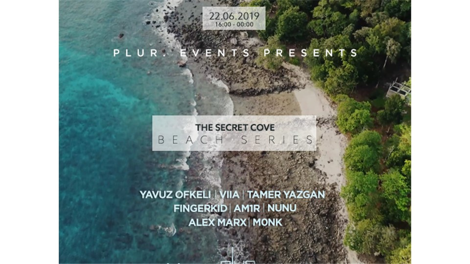 Plur. Presents: The Secret Cove Beach Series