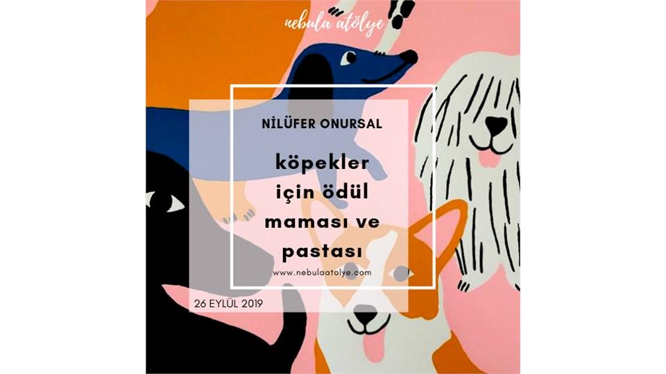 Nilüfer Onursal ile Köpeklerimiz için Ödül Maması ve Doğum Günü Pastası