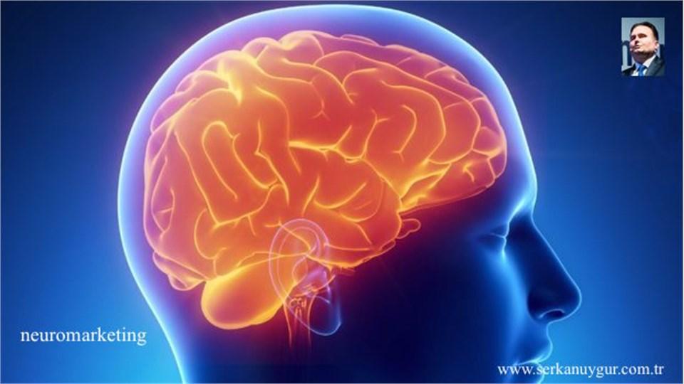 İnovasyon Odaklı Neuromarketing Eğitimi Workshop