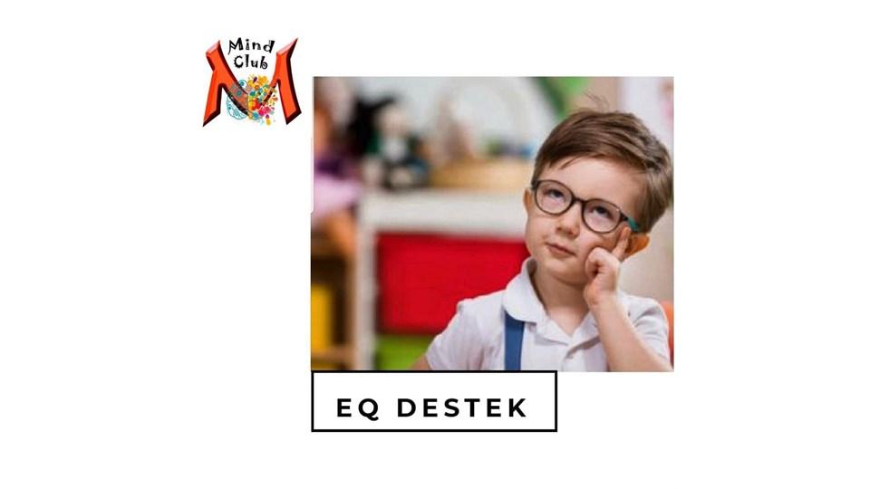 IQ DESTEK PROGRAMI 6-8 YAŞ